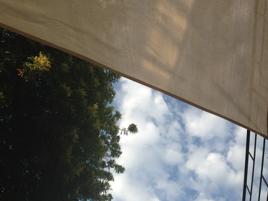 view from under the sunshade