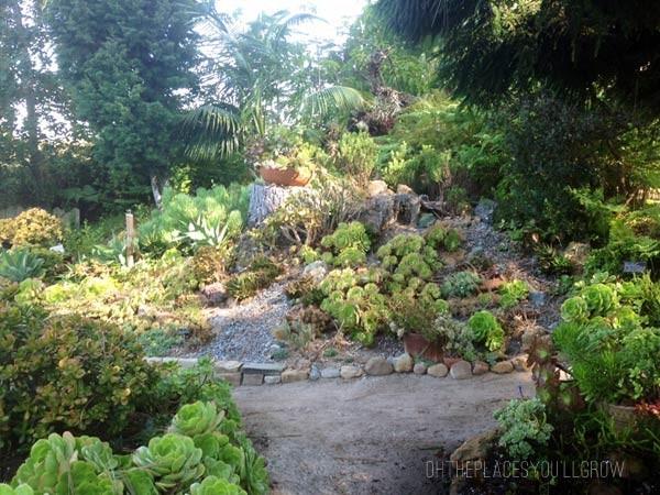 san-diego-botanical-gardens03