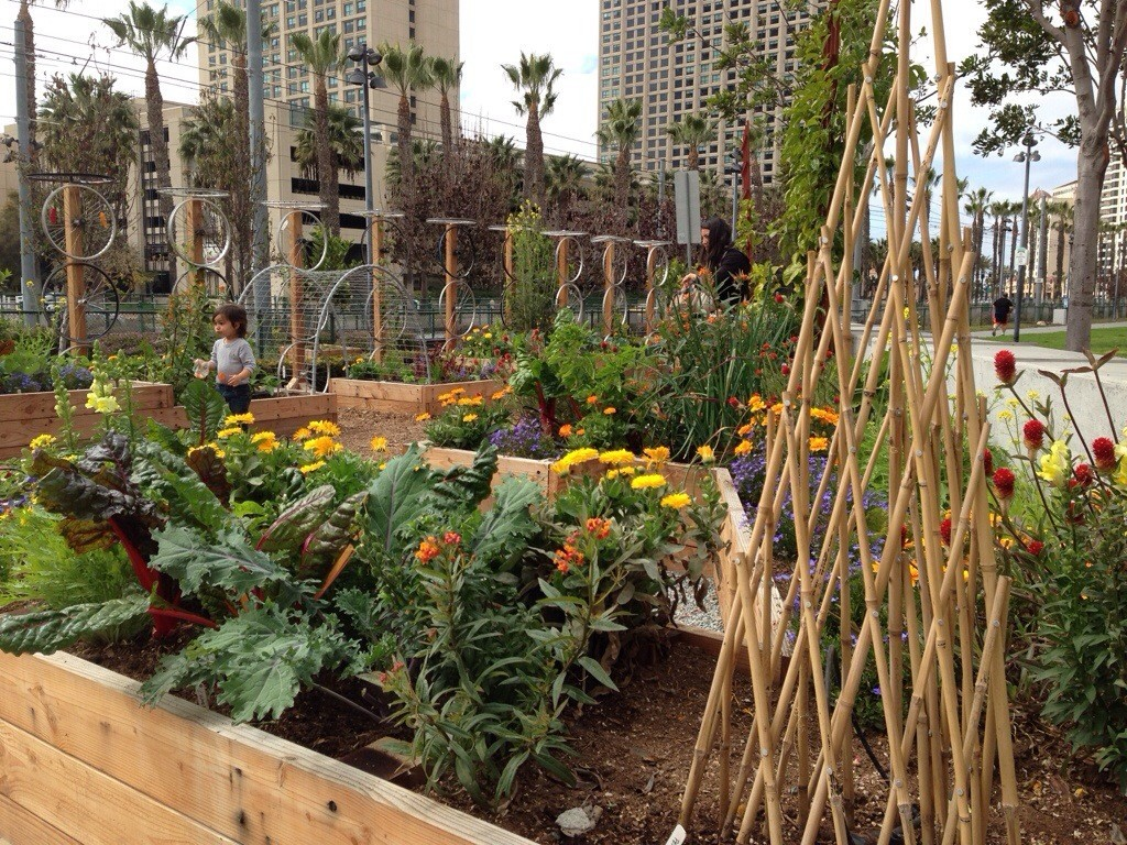 Garden at the San Diego Children\'s Museum | Oh The Places You\'ll Grow